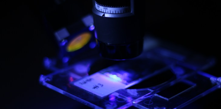 Fluorescence Microscopy in Biomedical Sciences