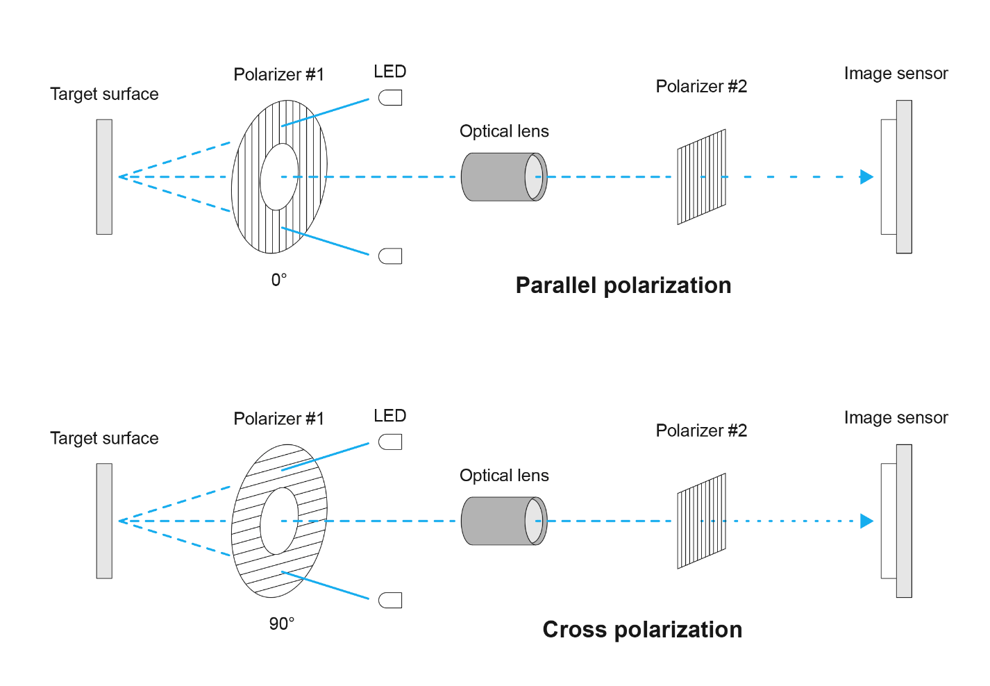 Dino-Lite polarizing digital microscope in its parallel and cross polarized configurations.